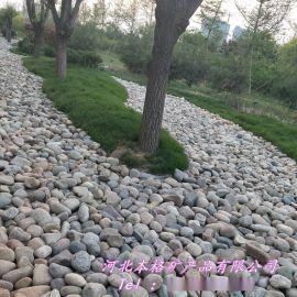 本格厂家直销鹅卵石 鹅卵石滤料 水处理用砾石