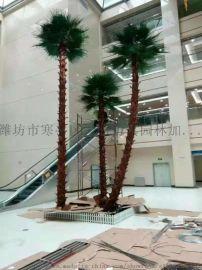 北京仿真椰子树  厂家天骄仿真园林