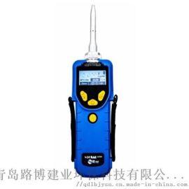 美国华瑞PGM-7380个人用VOC检测仪