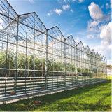阳光板温室厂家直销 承接阳光板温室造价