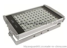 FAT-E100防水防尘防腐LED泛光灯