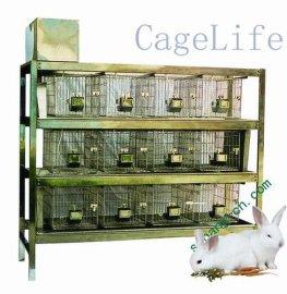 不锈钢兔笼、塑料兔笼、实验兔笼