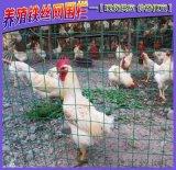 养鸡围栏网绿色养殖铁丝网围栏圈地波浪状铁丝网护栏厂家直销