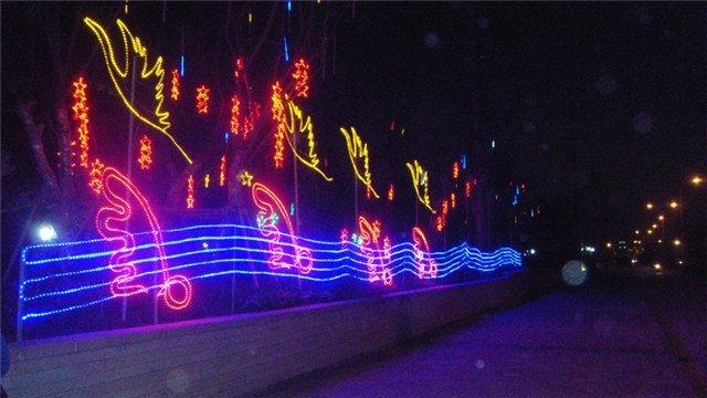 广场亮化灯,公园草坪亮化灯,LED网灯