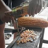 玉米脫粒機
