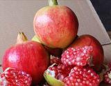 富民  新鲜水果 肉质鲜美 无公害软子红石榴