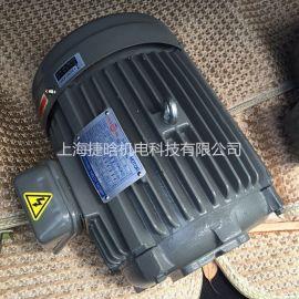 C30-63B030HP-6P油泵电机油泵  马达 液压泵  电机