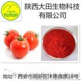 番茄  提取物   5-20%