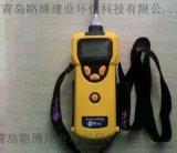 美國華瑞PGM-1600可燃氣有  體檢測儀