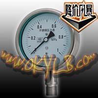 全不锈钢压力表系列 (Y-60B/100B/150B)