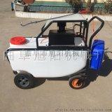 供应150L手推式农用喷雾器机多功能电动消毒机