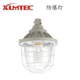 厂家直销CCD防爆灯 IIC级防爆照明灯具 价格优惠 质量好