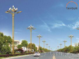 泰格LED照明灯 景观灯、新农村路灯,高杆灯