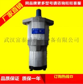 中联重科环卫车辆压缩垃圾车用合肥长源CBT-F563-BFHL齿轮泵