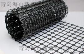 双向拉抻塑料土工格栅 山东土工格栅 复合土工格栅