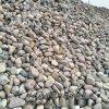 本格廠家供應 天然水洗鵝卵石 高品質鵝卵石