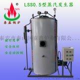 燃油燃氣蒸汽發生器生產廠家圖片LSS0.5MW型號