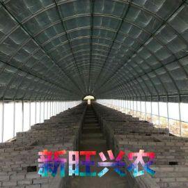 新旺兴农温室板房大棚骨架建设