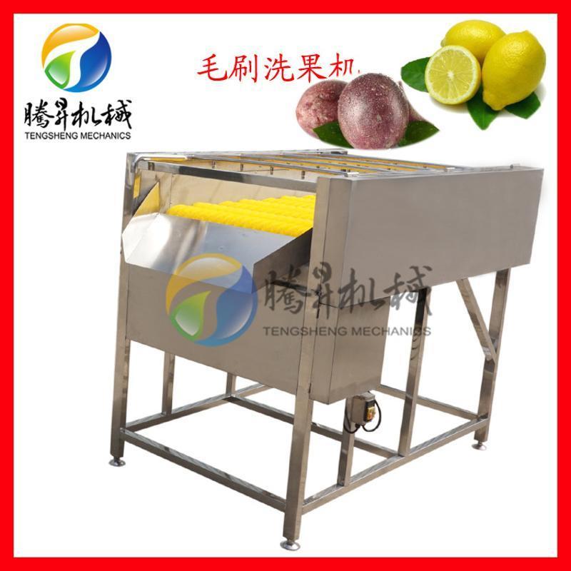 定製款毛刷噴淋洗果機 芒果清洗機 檸檬清洗機