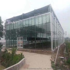 智能温室大棚 温室造价 温室设计施工