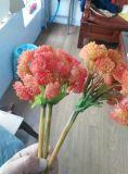 仿真花藝,多肉植物,米果仔TPE軟膠料,手感真實,好上色