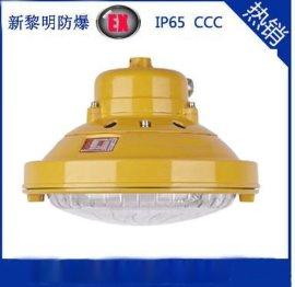 森本SBF6107-YQ40W免维护节能防水防尘防腐吸顶灯,三防无极灯