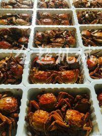 即食螃蟹真空气调包装机盒式包装封口机