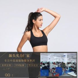 夏季新款专业运动瑜伽文胸经典防震健身内衣跑步透气上衣