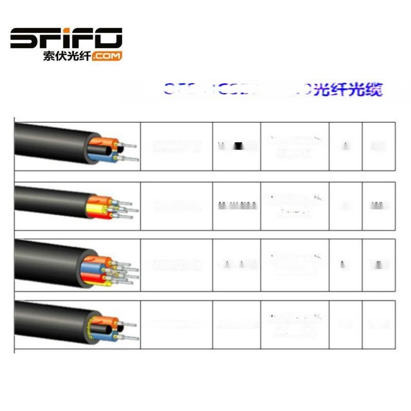 OFS  AC01281-10光纤电缆