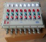 BXK系列不鏽鋼防爆控制箱(IIB、IIC)