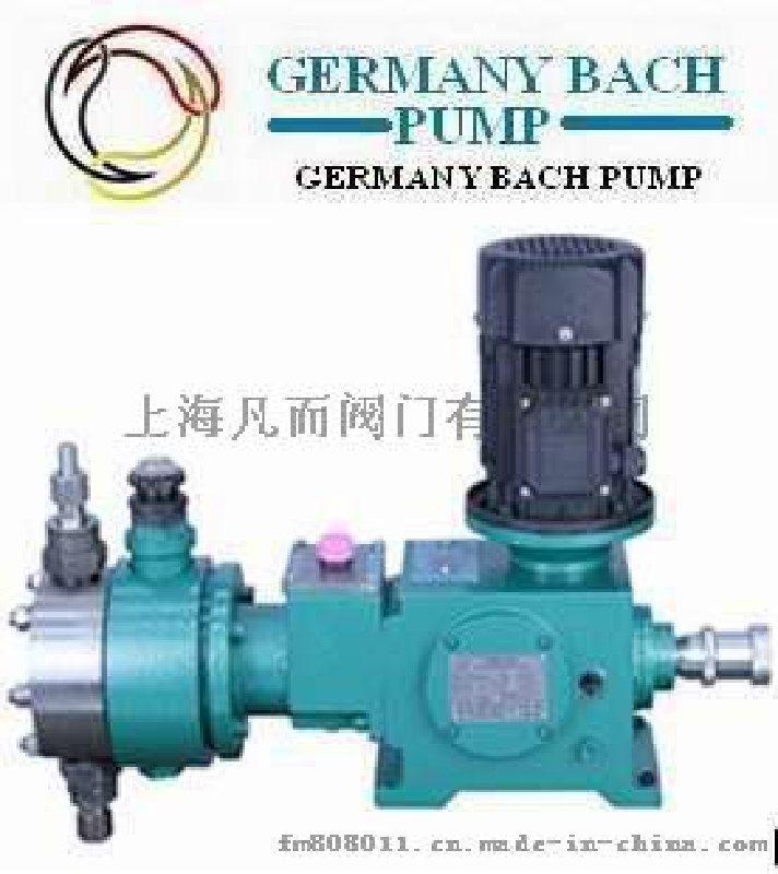 进口液压隔膜计量泵 进口机械隔膜计量泵 欧洲(巴赫)品牌