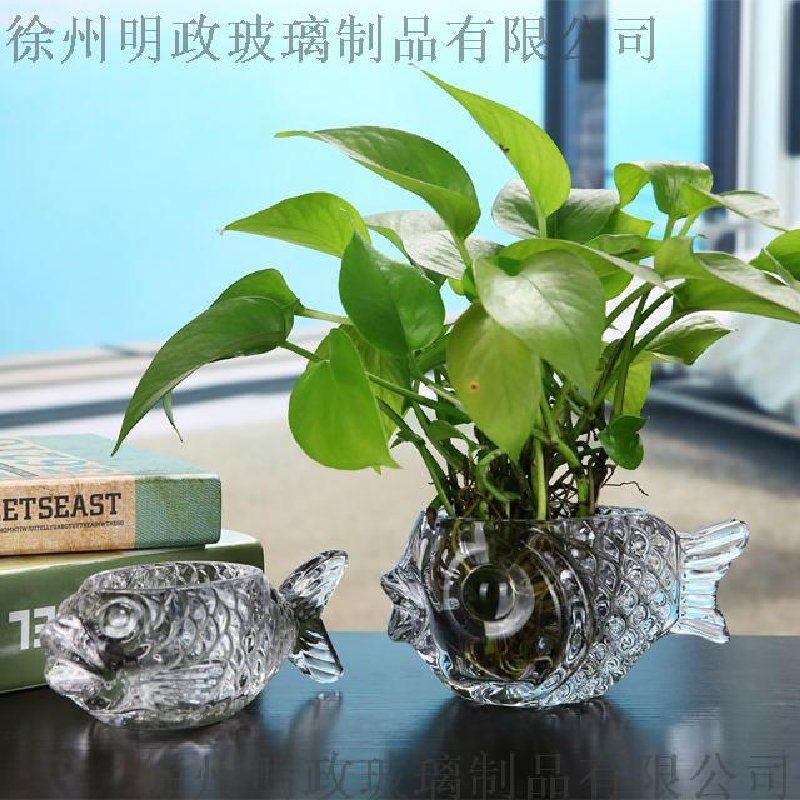 透明玻璃花瓶客厅摆件插花绿萝富贵竹水培花瓶摆件玻璃鱼水培杯