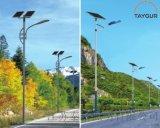 泰格太陽能路燈,戶外路燈杆,LED照明燈,單臂路燈