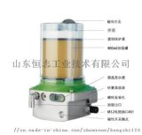 自动润滑泵  自动注油