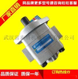 合力叉车 H2000大柴CA498发动机 齿轮泵 十花齿CBHZ-F31.5-ALH6L齿轮泵