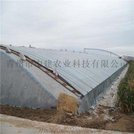日光温室造价 蔬菜大棚工程