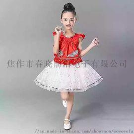 幼儿亮片白纱蓬蓬裙表演服戏服舞蹈服