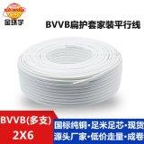 金環宇電線電纜BVVB護套線二芯多支6平方明線照明用線白色線