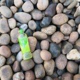 大兴区鹅卵石填充   永顺水厂用鹅卵石