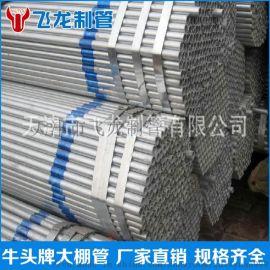 直缝焊管  高频焊管  薄壁焊管