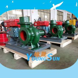 防汛移动泵车6/8柴油机水泵机组 250HW-  流量灌溉柴油水泵