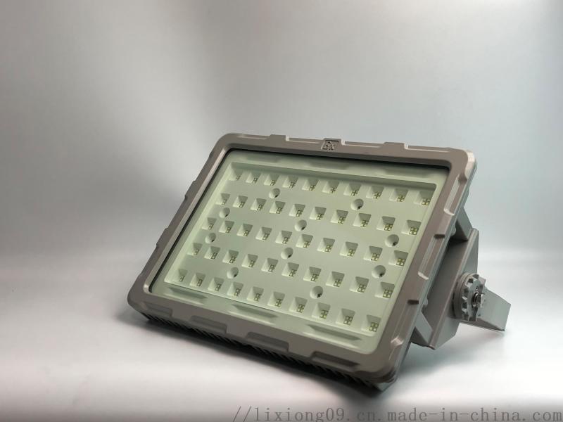 OHSF817 大款LED免维护三防灯