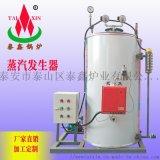 燃氣蒸汽發生器,蒸汽發生器圖片,全自動蒸汽發生器