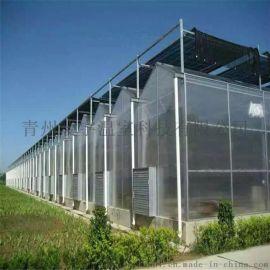 玻璃温室材料 温室工程 连栋温室 厂家直销