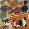 本格供应优质打磨石 机制天然洗米石