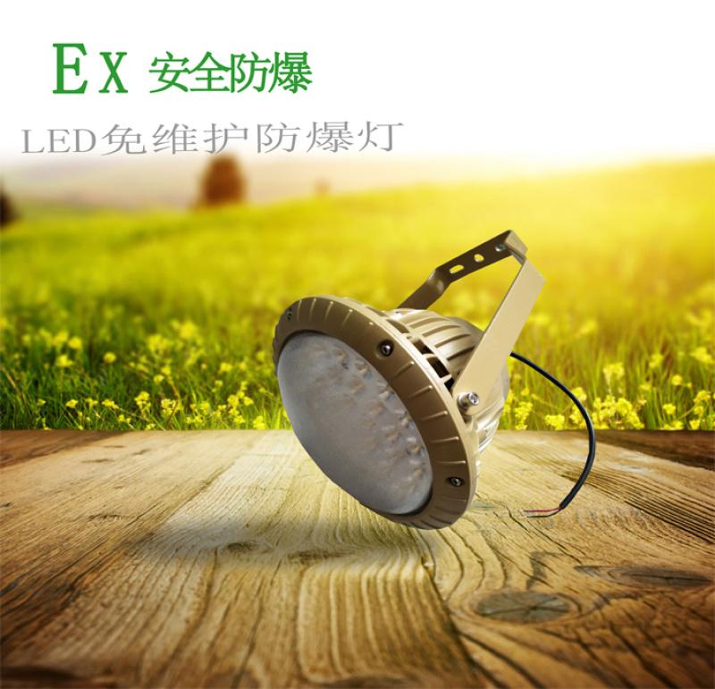【矿用灯】ZAD301LED免维护防爆节能灯圆形