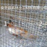 双向塑料护坡防裂土工格栅网养殖养鸡格栅网
