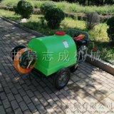 供应汽油高压喷雾器园林绿化洒水机