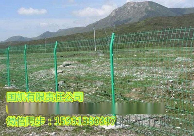 Q235低碳 双边丝护栏网