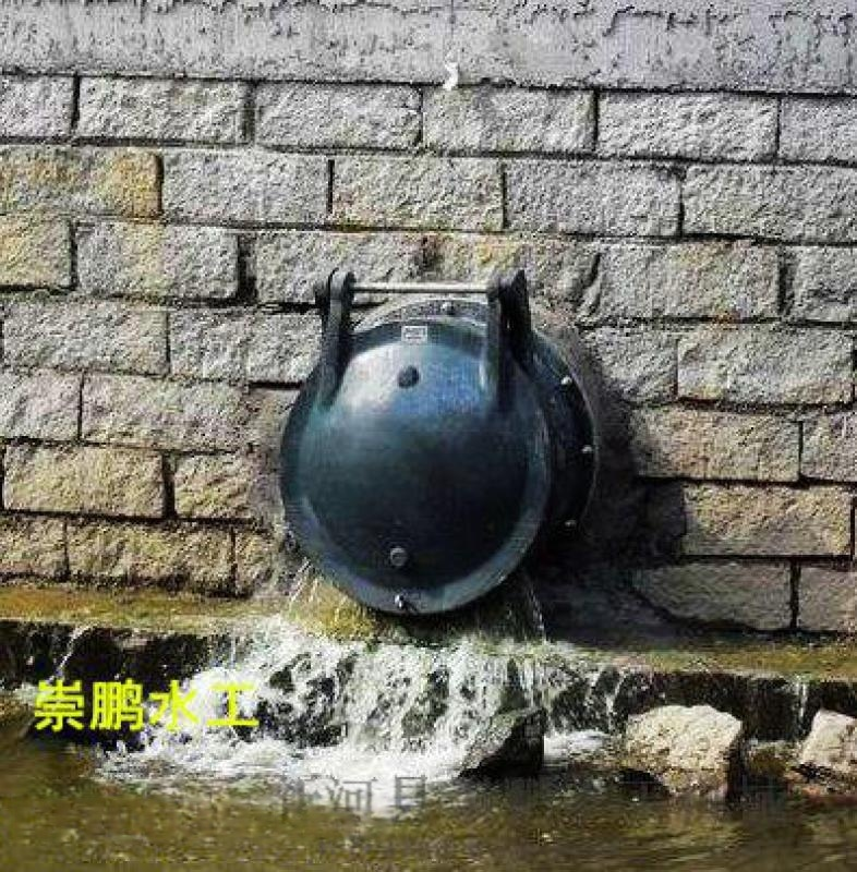 鱼塘专用拍门法兰式铸铁拍门厂家